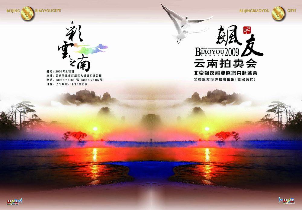 信鸽广告欣赏产品展示--中信网鸽业大全图片