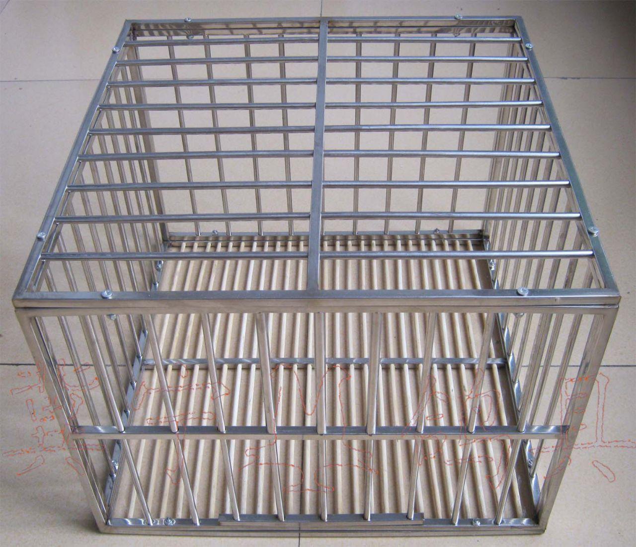 公棚.鸽展 专用高档不锈钢展示笼