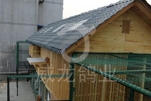 欧式全实木组装可拆卸式鸽舍