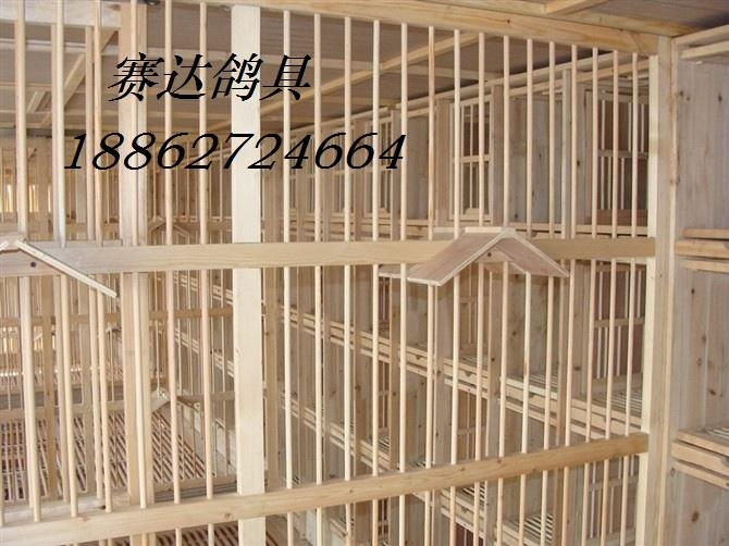 鸽舍内部结构产品展示--中信网鸽业大全