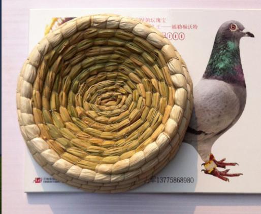 精品玉米皮鸽窝