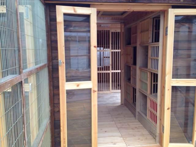 欧式木质鸽棚产品展示--中信网鸽业大全