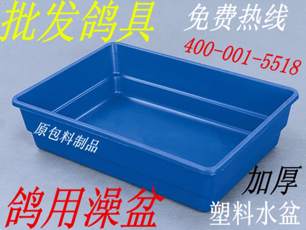 信鸽澡盆 赛鸽洗澡盆 加厚塑料盆