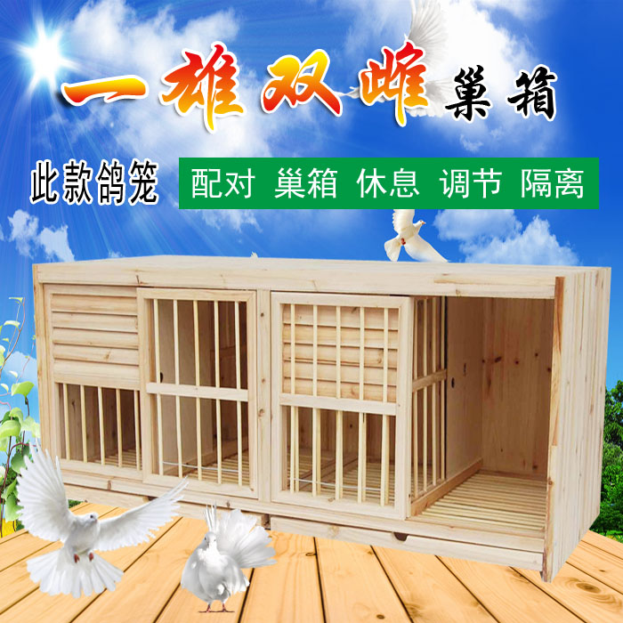 赛鸽巢箱 两雌一雄配对笼 实木配对笼 赛鸽配对笼