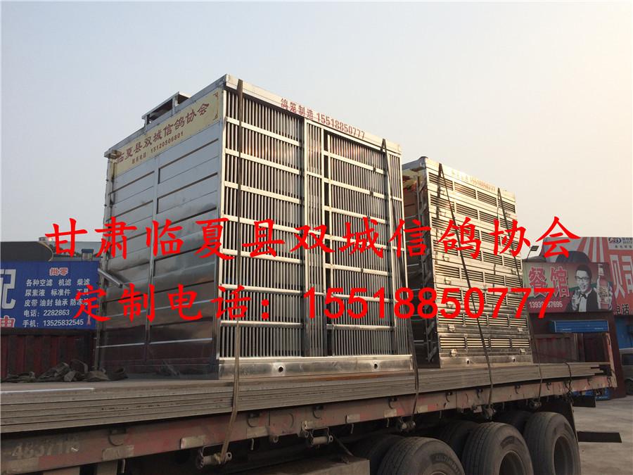 甘肃临夏双城信鸽协会