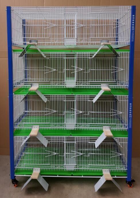 台湾新款高级配对笼 观赏笼 四层八对带不锈钢栖架
