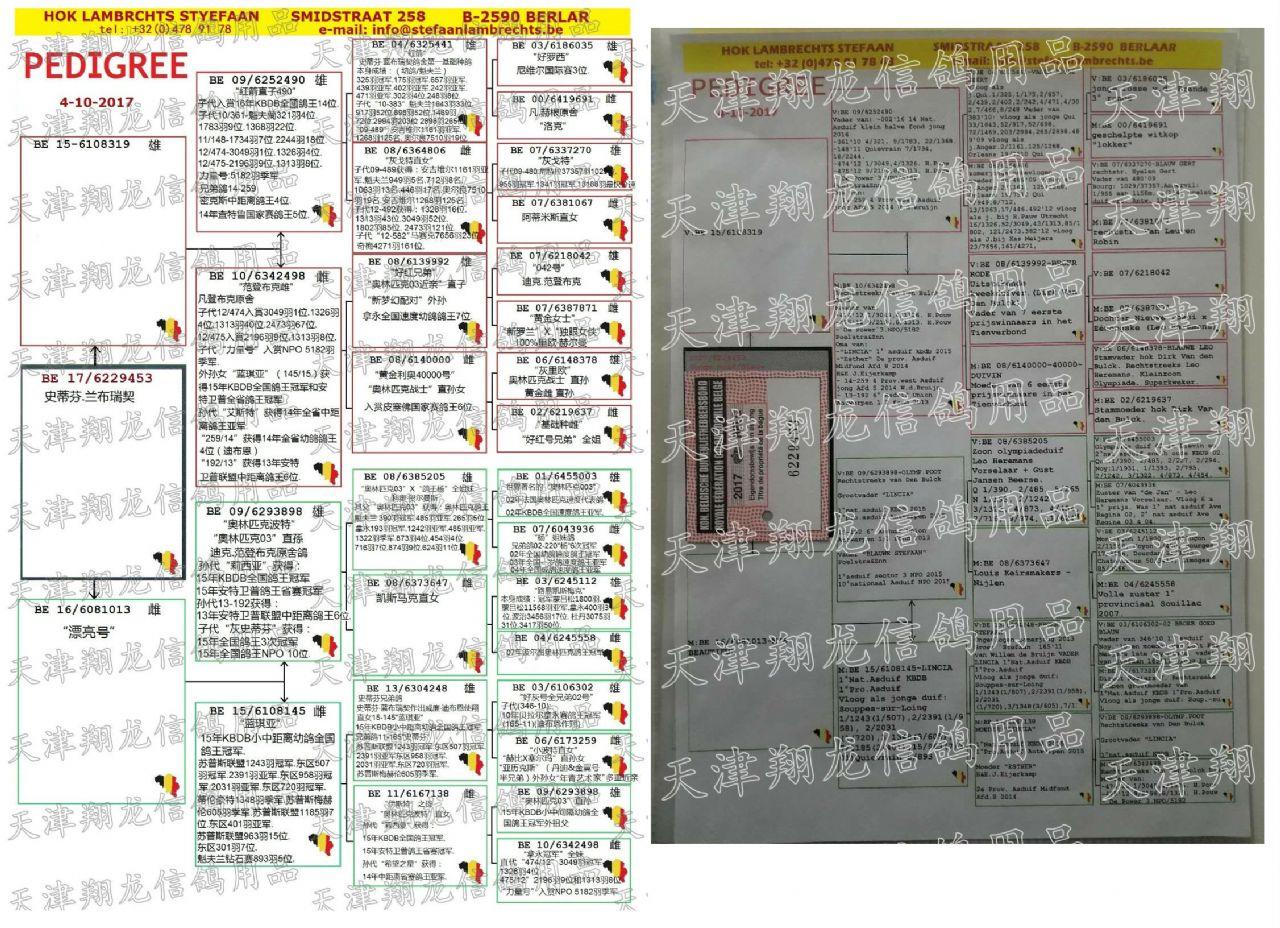 修复原本文件.翻译中文《史蒂芬.兰布瑞契》