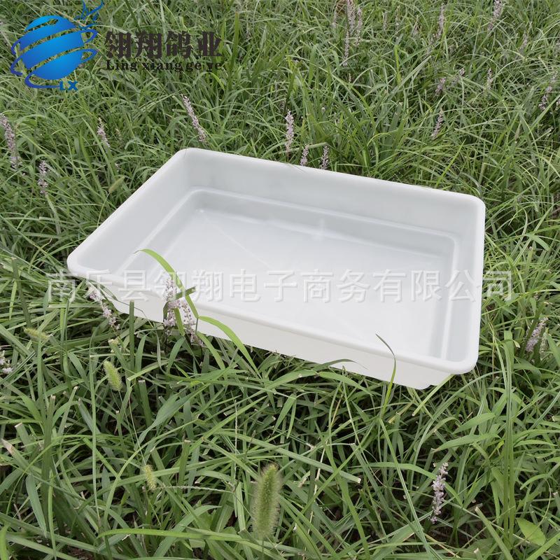 赛鸽信鸽专用大号澡盆 鸽子洗澡盆浴盆鸽子用品用具鸽具