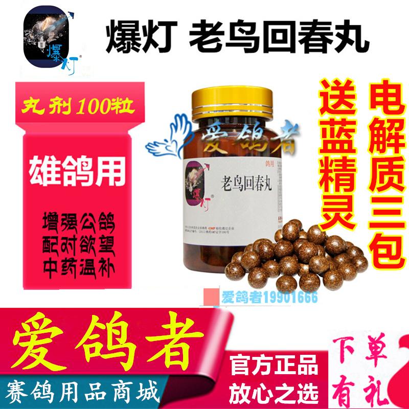 爆灯鸽药【老鸟回春丸】100粒/种雄鸽/公鸽/雄鸽宝