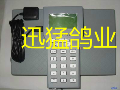 安捷鸽钟/安捷Ⅳ型电子扫描器/全新/赛鸽报道/赛鸽比赛