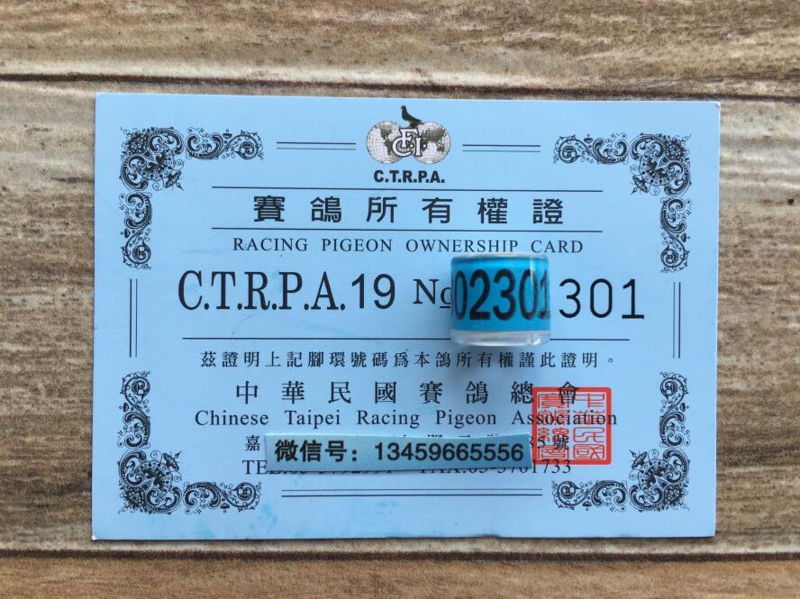 2019年 台湾脚环CTRPA 带证 保真