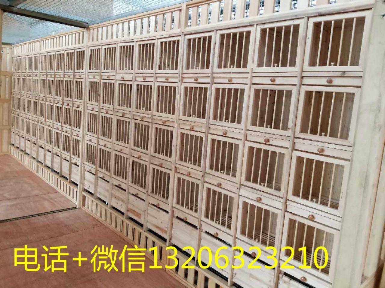 信鸽巢箱 赛鸽组合巢箱 调节巢箱 信鸽配对笼鸽笼