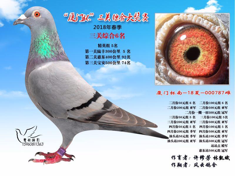 """2018年春季""""�B�T杯""""三�P�C合大���6名"""