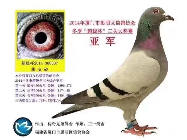 "2014年�B�T市思明�^信���f��冬季""超�杯""三�P大������"