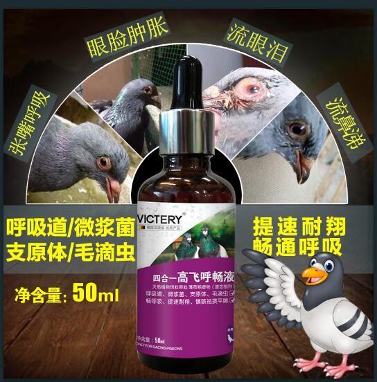 四合一高飞呼畅液:单关赛、多关赛天然植物呼吸道清理剂