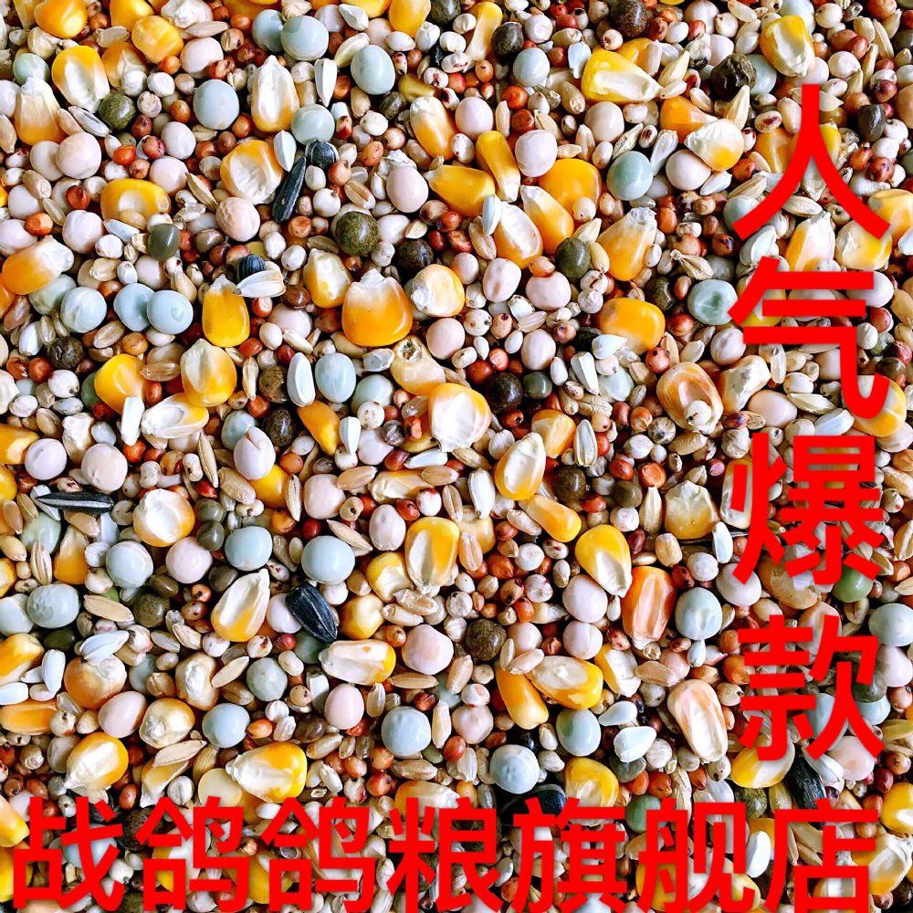战鸽A级鸽粮带玉米营养赛飞饲料50斤包邮