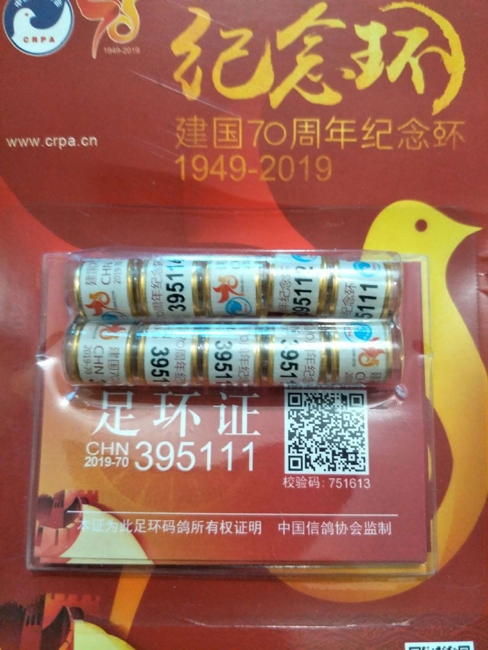国庆节70周年纪念环。2019-70
