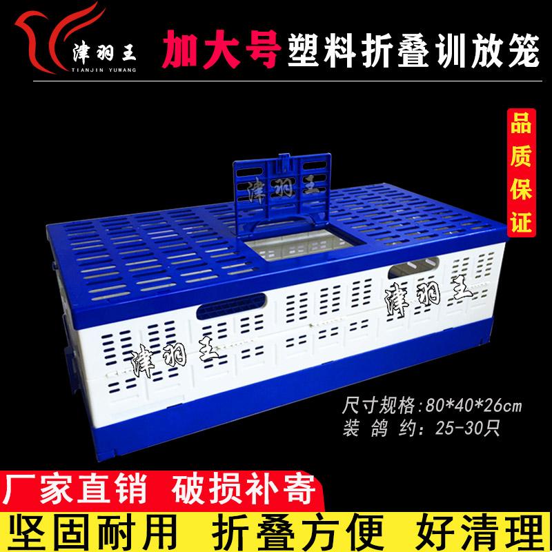 津羽王 80公分塑料折叠训放笼  整箱批发