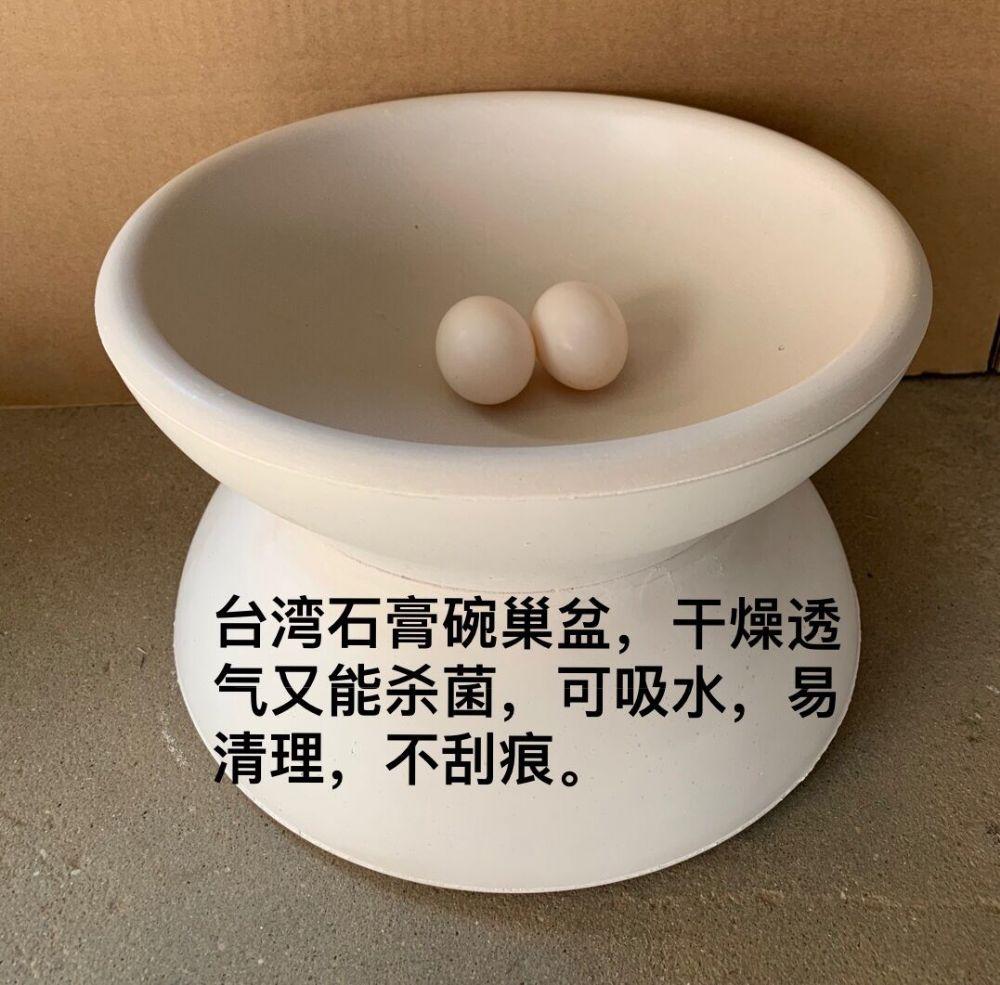 台湾石膏巢盆 鸽子碗窝 种鸽繁殖窝 孵蛋盆