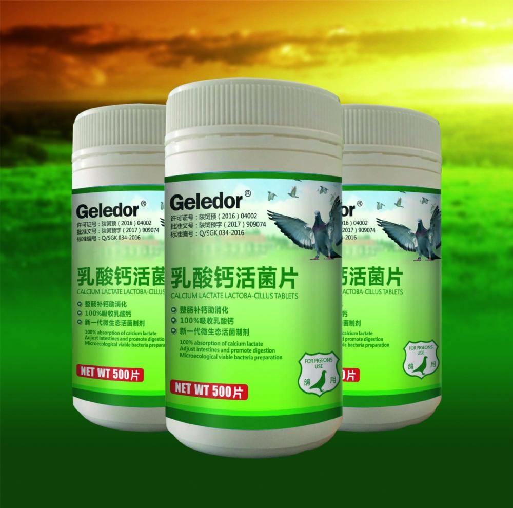 乳酸钙活菌片
