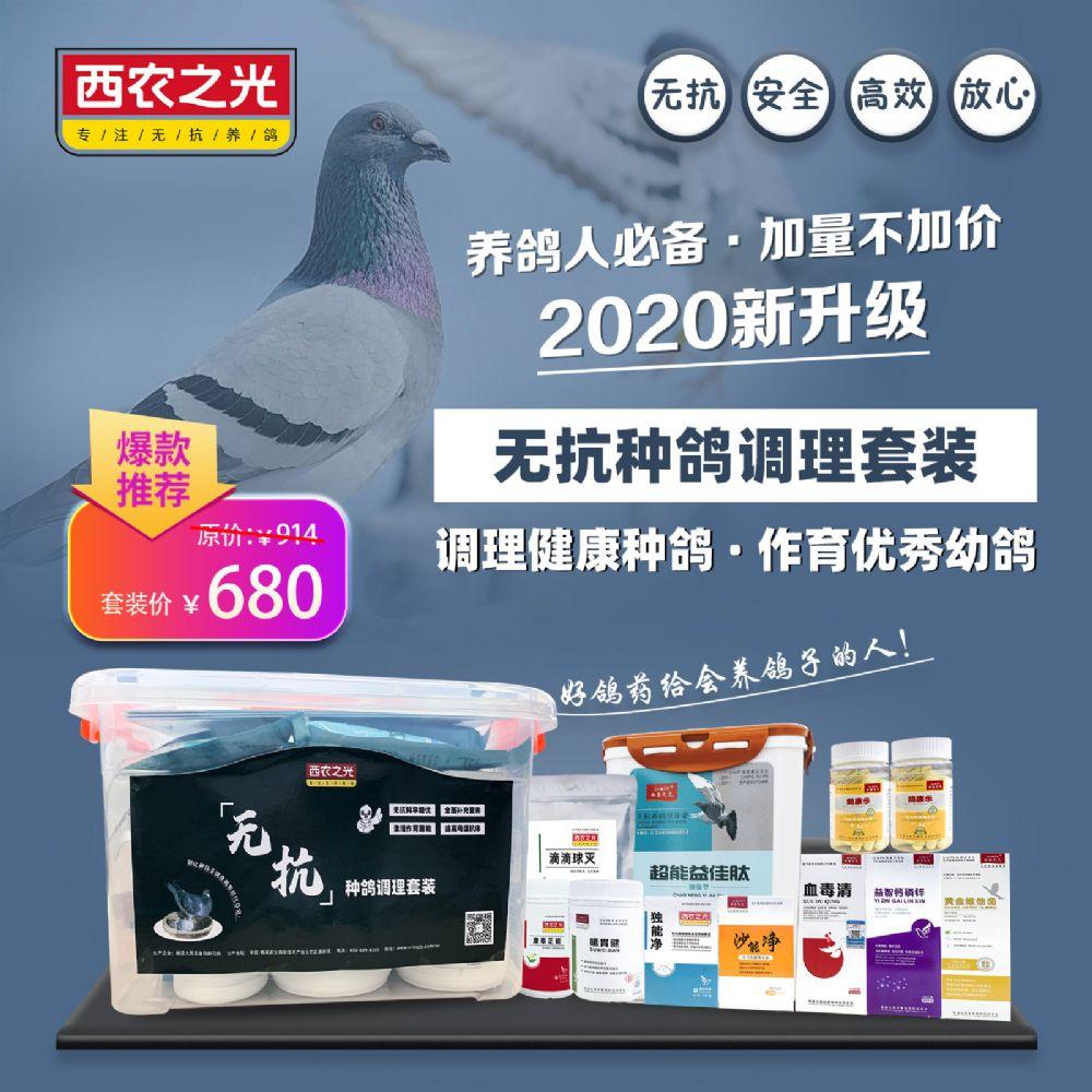 西农之光无抗种鸽调理套装赛鸽用无抗生素无化药健康安全保健中药