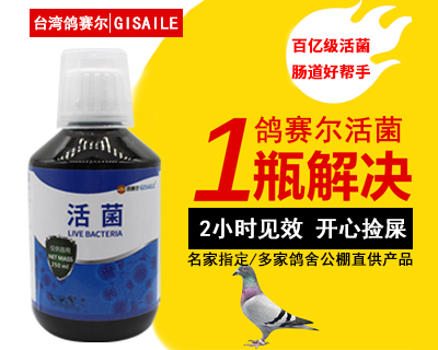 鸽赛尔活菌250ml鸽药鸽子药拉稀绿便水便下痢