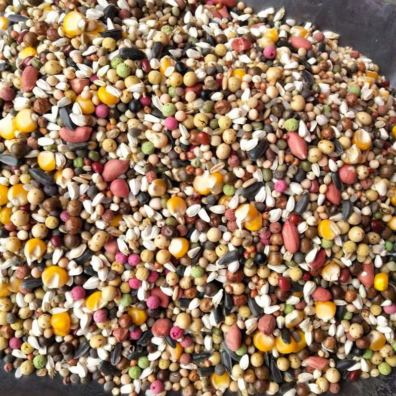 多种维生素幼鸽营养素粮