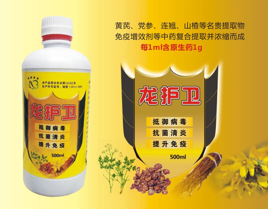 龙护卫-抗病毒、清炎、提升免疫力