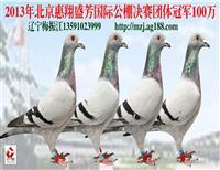 惠翔团体冠军100万 辽宁梅振江