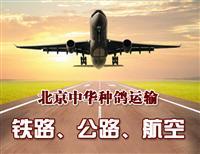 北京中华信鸽运输相关信息运输说明