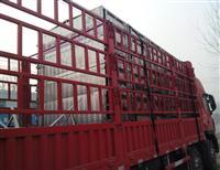 扬州火车头信鸽协会