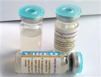 荷�m威力�_-���}合新城疫(PC-ND)水�|不活化疫苗