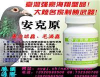 专业治疗毛滴虫,球虫极品克星-安克原