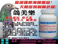 比赛操训专用特效药品-鸽美乐-赛鸽比赛时的知音