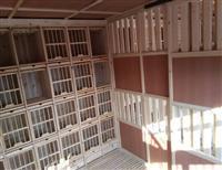 鸽舍内部结构