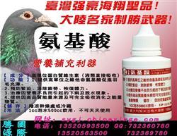 比赛专用特效品-氨基酸-迅速恢复赛鸽体能有奇效