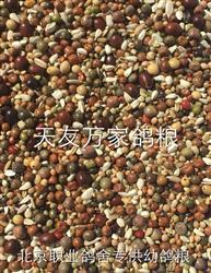 北京职业鸽舍专供幼鸽粮