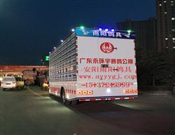 广东永环宇赛鸽公棚定制放飞车