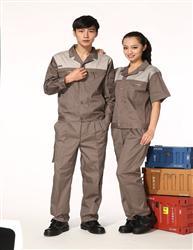 分�w服-半袖YY1303