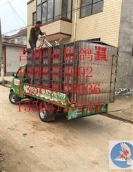 安徽六安舒城信鸽协会不锈钢鸽笼