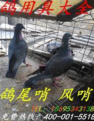鸽尾哨【2音哨子】信鸽用品风哨竹哨鸽哨