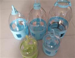 高档透明饮水器鸽子喝水用具水壶信鸽用品用具规格有4L