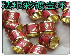 珐琅彩精铜镀金脚环 定做款 现货款 (红、蓝、黑)发货速度快