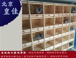 【特殊定制】赛鸽组合巢箱