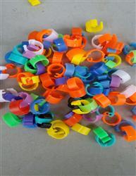 彩色塑料识别环(无数字) 足环 脚环 鸽环鸽具 信鸽用品