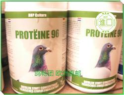 DHP  浓蛋白粉 400g