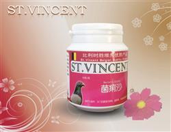 菌痢沙-胶囊剂治疗大肠杆、沙门氏菌感染、
