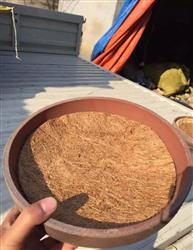 买盆送草垫(棕垫)