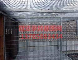 镀锌公棚围网