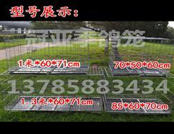 铁丝折叠笼 拍卖笼 观察笼 隔离笼 展示笼 配对笼